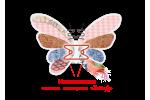 Матрас ортопедический Flower двухсторонний MatroLuxe | Butterfly