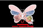 Ортопедический матрас Piony односторонний Matroluxe - Butterfly