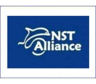Комфортабельная мебель NST Alliance
